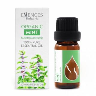 BIO Minze - 100% naturreines ätherisches Öl (10ml)